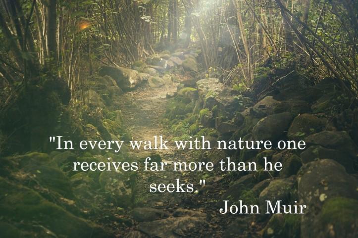 InEveryWalkWithNature_splitshire-forest-pixabay