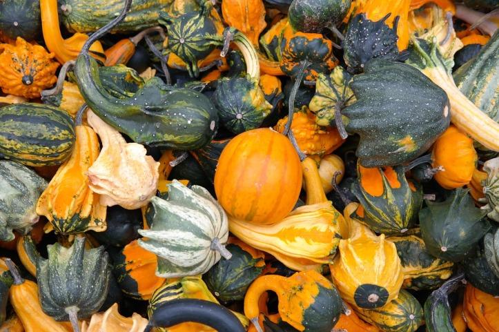 hans-braxmeier-pumpkins-pixabay