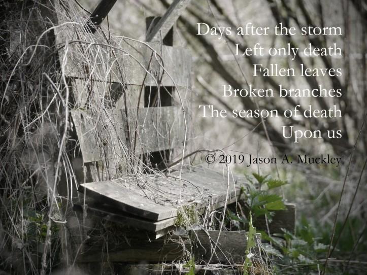 remains-braetschit-decay-death-seasons-pixabay