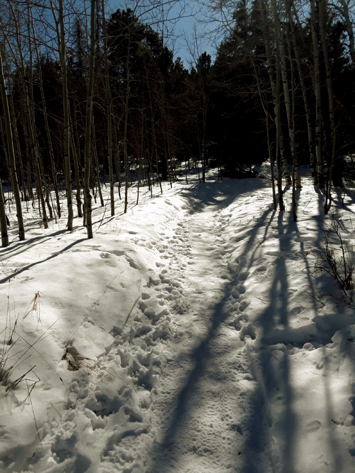 Snowy Trail at Meyer Ranch Park_2019-11-02